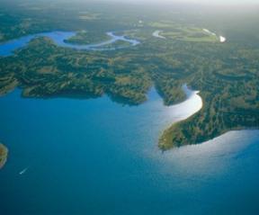 Aerial View of Canyon Lake